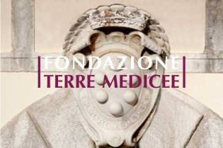 banner_terremedicee